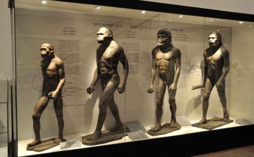 Why Christians CANNOT Believe inEvolution